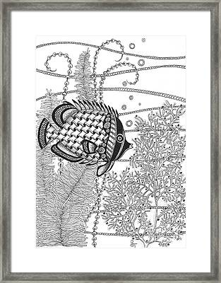 Tangle Fish II Framed Print by Stephanie Troxell