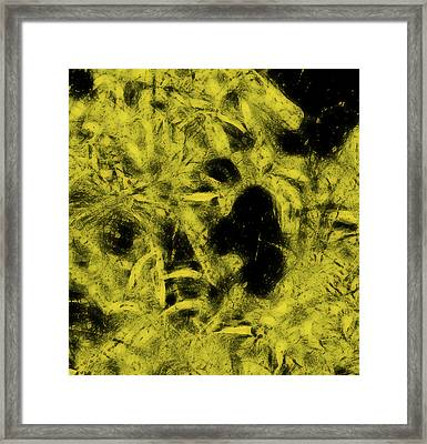 Tangled Branches Framed Print