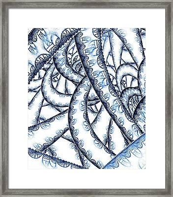 Tangled Lace Framed Print by Anastasiya Malakhova