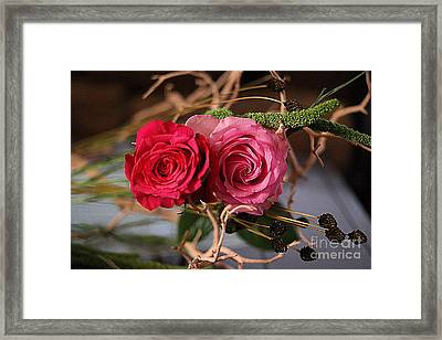Framed Print featuring the photograph Tangled On Driftwood by Diana Mary Sharpton