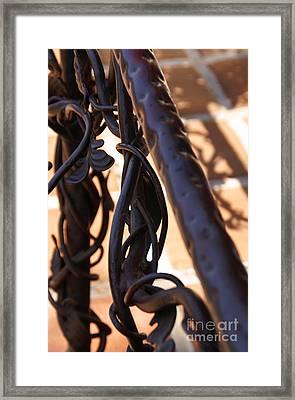 Tangled Vines Framed Print by Linda Shafer