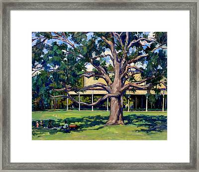 Tanglewood Before The Concert Framed Print