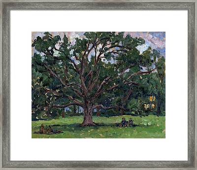 Tanglewood Tree Framed Print