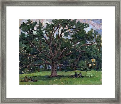 Tanglewood Tree Framed Print by Thor Wickstrom