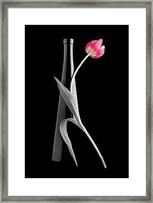 Tango Framed Print