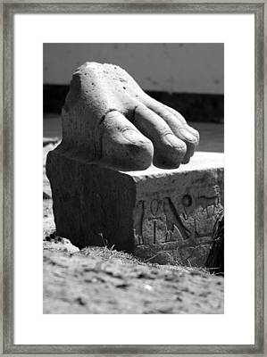 Tanis Foot Framed Print by Donna Corless
