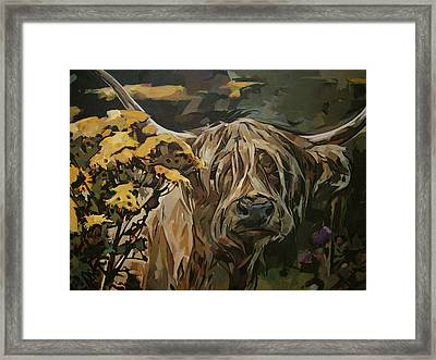 Tansy Weed Framed Print by Tim  Heimdal