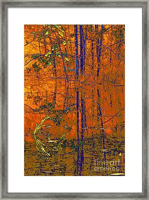 Tapestry Framed Print by Steve Warnstaff