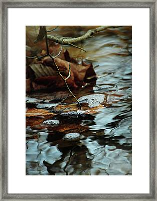 Tapping Into The Stream Framed Print by Rebecca Sherman