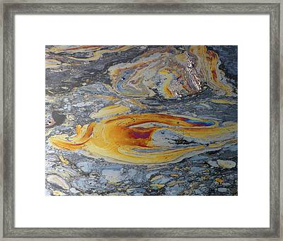 Tar Pit's Beauty II Framed Print