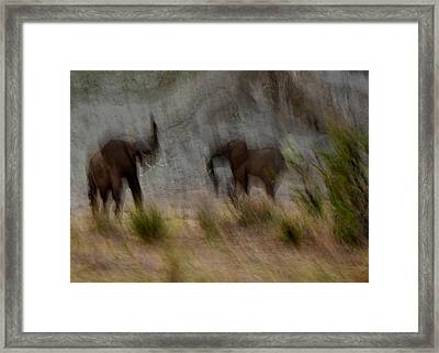 Tarangire Elephants 1 Framed Print