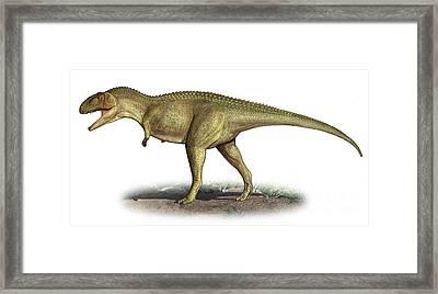Tarascosaurus Salluvicus, A Prehistoric Framed Print by Sergey Krasovskiy