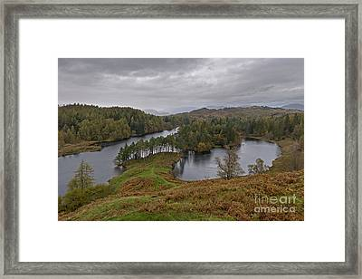 Tarn Hows Drenched Framed Print by Richard Thomas