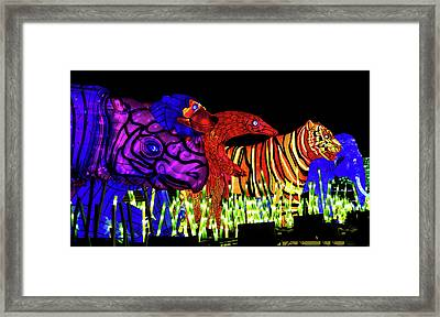Taronga For The Wild 1 Framed Print