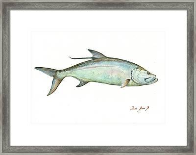 Tarpon Fishf Framed Print