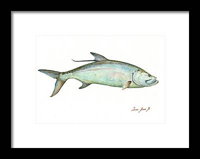 Tarpon Framed Prints