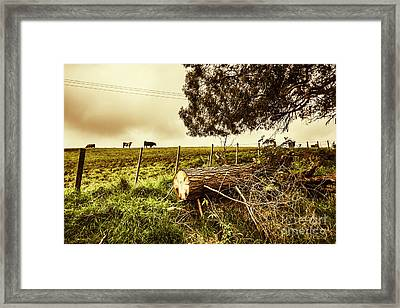 Tasmanian Country Farm Details Framed Print by Jorgo Photography - Wall Art Gallery