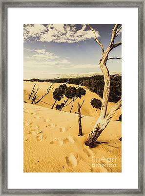 Tasmanian Desert Tree Landscape Framed Print