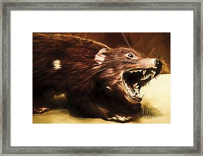 Tasmanian Devil Digital Painting Framed Print by Jorgo Photography - Wall Art Gallery
