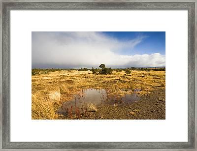 Tasmanian Storm  Framed Print by Mike  Dawson