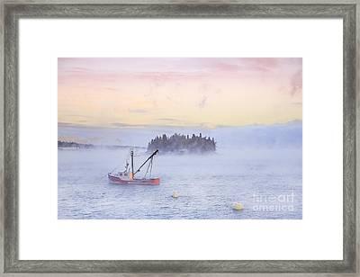 Taste Of Dawn Framed Print by Evelina Kremsdorf