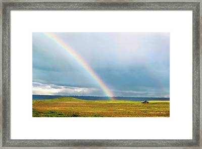 Taste The Rainbow Framed Print