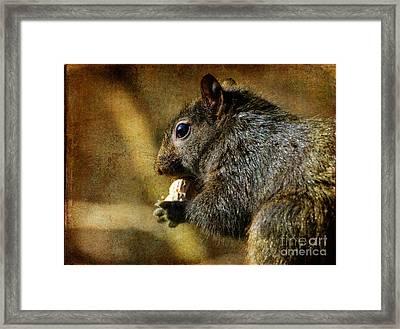 Tasty Snack Framed Print by Lois Bryan