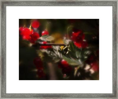Tasty Treats Framed Print by Margarita Buslaeva