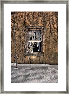 Tattered Curtain In Snow 2010 Framed Print by Sari Sauls