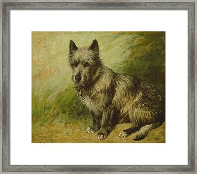 Tatters Framed Print by John Emms