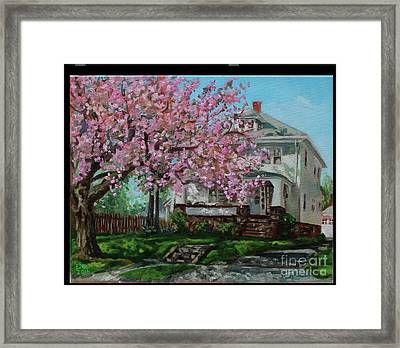 Taylor Cherry Tree Framed Print by Edward Williams