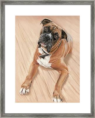 Taz My Best Friend Framed Print by Vanda Luddy