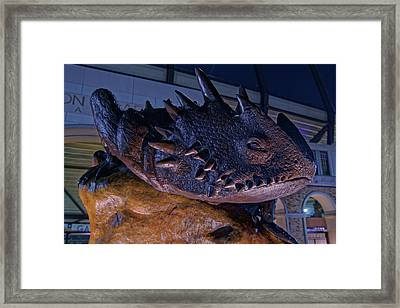 Framed Print featuring the photograph Tcu Frog Mascot by Jonathan Davison