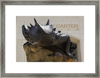 Tcu Superfrog - Digital Oil Painting Framed Print by Stephen Stookey