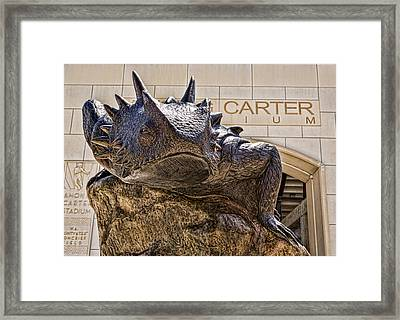 Tcu Superfrog - No. 4 Framed Print by Stephen Stookey