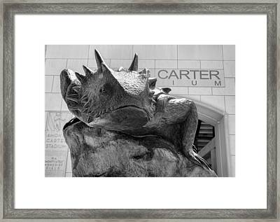Tcu Superfrog No. 6 Framed Print by Stephen Stookey
