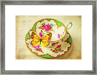 Tea Cup And Butterfly Framed Print