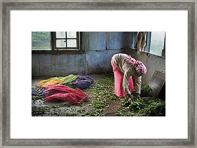 Framed Print featuring the photograph Tea Factory by Marion Galt