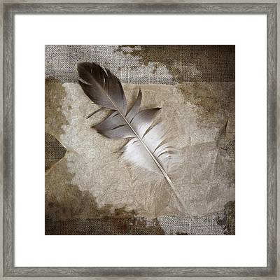 Tea Feather Framed Print by Carol Leigh