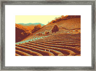Framed Print featuring the pyrography Tea Field by Artistic Panda