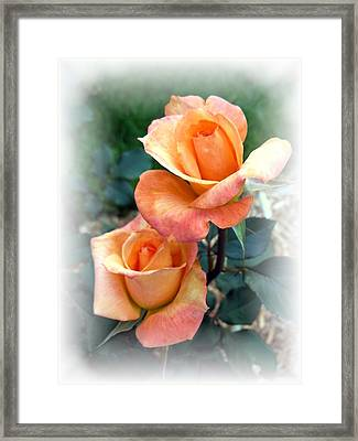 Tea For Two Framed Print by Carol Sweetwood