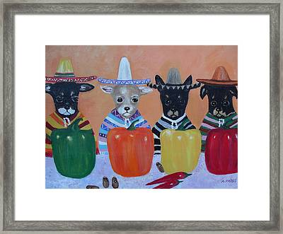 Teacup Chihuahuas In Mexico Framed Print by Aleta Parks