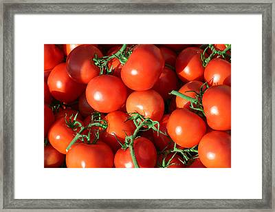 Teaming With Tomatoes Framed Print by Todd Klassy