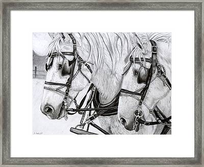 Teamwork Framed Print by Kristen Chrapek