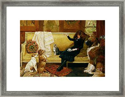 Teatime Treat Framed Print