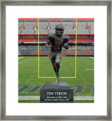 Tebow In The Swamp Framed Print by D Hackett