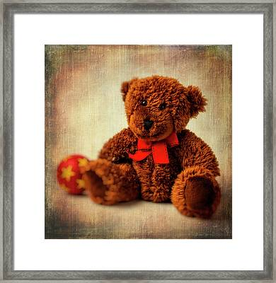 Teddy Bear And Ball Framed Print by Garry Gay