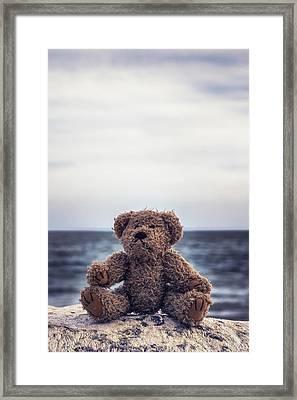 Teddy Bear At The Sea Framed Print by Joana Kruse