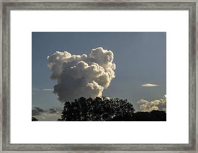 Teddy Bear Cloud Framed Print by Kim Lessel