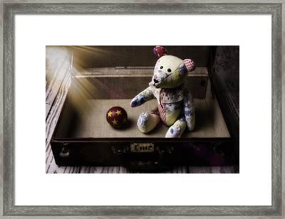 Teddy Bear In Suitcase Framed Print by Garry Gay
